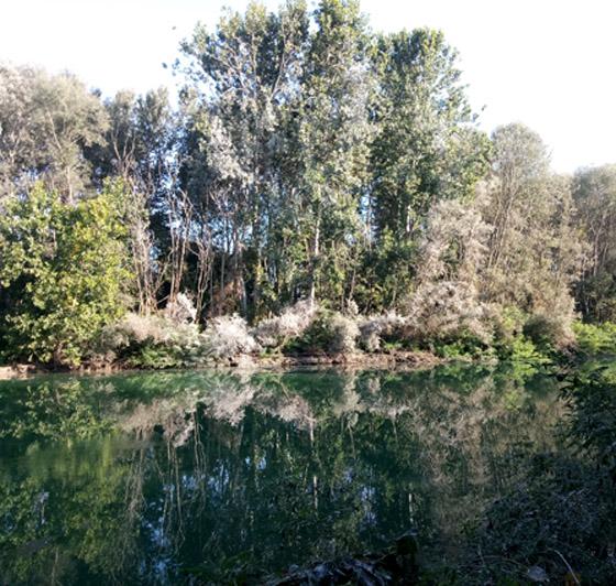 brusa-vecchia-oasi-isola